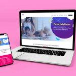 pinknblu website design socialorange portfolio